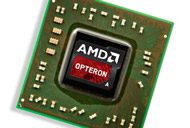 Opteron chip