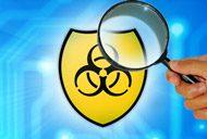 vulnerability identification