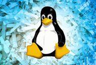 Linux security course