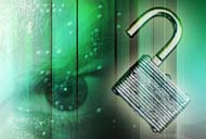 it security and joint venture