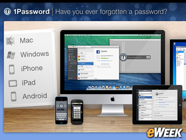 Get the Password Manager Going