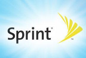 Sprint assets