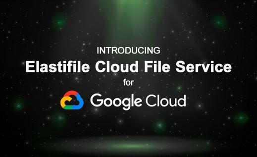 Elastifle.GoogleCloud