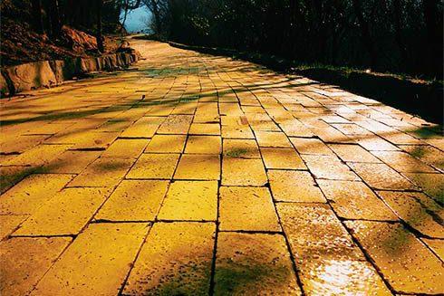 Yellowbrick.road