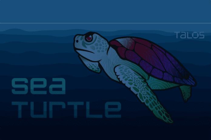 Cisco Talos Sea Turtle